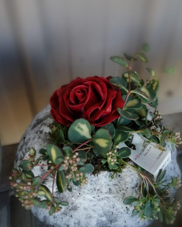 fleurs cirée chez de Lys en Délices